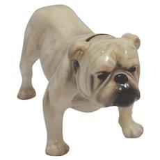 Royal Doulton Bulldog HN 1074 Frederick Daws c. 1932 - 1938