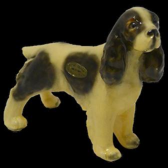 Vintage Morten's Studio Cocker Spaniel Dog c. 1930's - 1940's