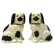 Staffordshire Porcelain Dog Pair early 20th century