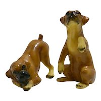 Boxer Puppies by Mortens Studio