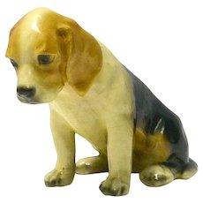 Mortens Studio Beagle Puppy c.1930's - 1940's