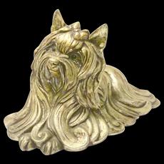 Kay Finch Yorkshire Terrier/Silky Terrier