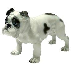 Vintage Rosenthal Bulldog by Fritz Diller c. 1914
