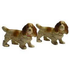 Miniature Cast Iron Spaniel Dogs