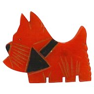 Art Deco Carved Cherry Bakelite Scottie Dog Brooch Pin