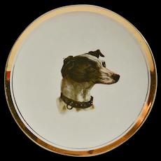 Antique Sevres Greyhound/Whippet Dog Portrait Plate c.1900-1908