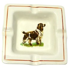 Royal Staffordshire Springer Spaniel Ashtray