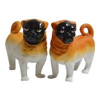 "Bavarian Pottery ""Monkey Face"" Pug Dogs c. 1890 - 1910"