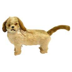 Vintage Miniature Mohair Spaniel Dog