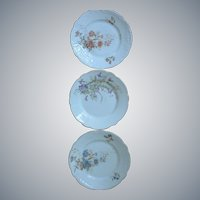 Set of 3 Hand-Painted Porcelain Floral Cabinet Plates, two are marked, signed, numbered