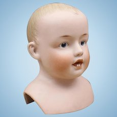 "Antique German ""Heubach"" Doll Head - Mold #7129"