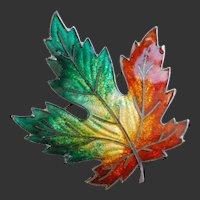 Sterling Enamel Brooch Canada Maple Leaf  Autumn Colours