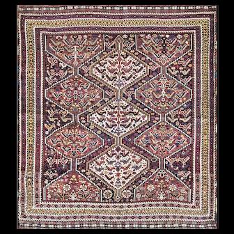 """5' x 5'10"""" Magnificent Antique Persian Qashgai Birds Rug, Tribal, c-1900, #16945"""