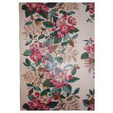 old Glazed Chintz Fabric Border