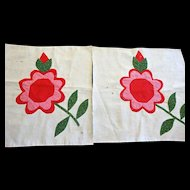 2 Quilt Blocks 1800's Applique Flowers