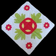 1800's Applique Quilt Block 26-inches