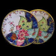 Tobacco Leaf Plates Tin Metropolitan Museum Gorgeous Colors 10""