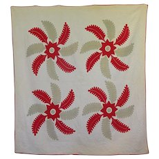 Fine Antique Whirling Plumes Quilt c. 1860