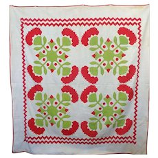 Antique Appliqued Cox Comb Quilt Variation ZigZag Border