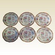 Coalport Butter Plates *Pembroke* 6316  *BIRDS*