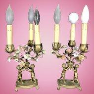 Pr French Bronze Porcelain Flowers Boudoir Lamps Cherubs France