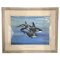 1990 Louis John Weber Watercolor Painting Orca Pod Killer Whales