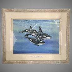 1990 Louis John Weber Watercolor Painting Orca Pod Killer Whales