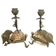 Pr French Candle Holders Bronze Birds On Branch W Snails Conch Sea Shells 19th Century France