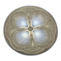 R Rene Lalique France Coquilles Platter Charger Plate Opalescent Glass Shell Motif France