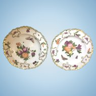 Pair 18th Century Chelsea Porcelain Botanical Plates Earl D. Vandekar Label