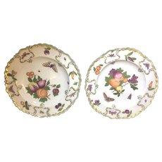 Pair 18th Century Chelsea Porcelain Botanical Plates Earl D. Vandekar Label