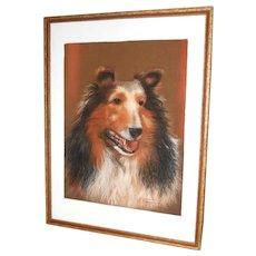 Original Collie Dog Pastel Drawing Portrait Painting