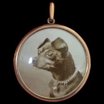 """Large 1 1/2"""" 10K Photo Locket with Enamel Dog Image dated 1913"""