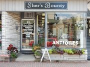 Sher's Bounty Antiques