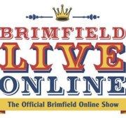 Brimfield Antique Shows