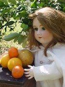 Minton's Doll and Curiosity Shop