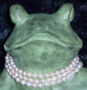 Elegant Frog