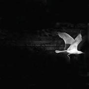 White Bird Vintage Jewelry