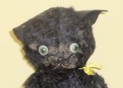 The Lucky Black Cats Emporium