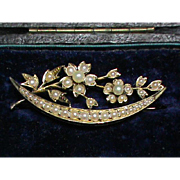 Antique Victorian 15k Gold Seed Pearl Brooch in box