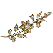 Antique Victorian 15k Gold Seed Pearl Flower Brooch