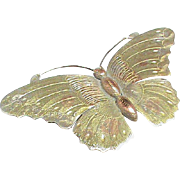 Antique Victorian Sterling Silver Butterfly Brooch with gold decor