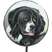 Antique Victorian 9k 9ct Gold Hand Painted DOG Stick Pin Brooch with box
