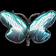 LARGE Art Deco Sterling Silver Butterfly wing Butterfly Brooch