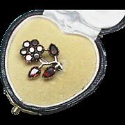 Small Antique Georgian 9k 9ct Rose Gold Garnet Flower Brooch in heart box