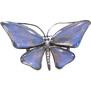 Victorian hallmarked sterling butterfly pin