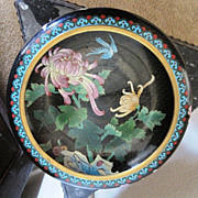 Chinese Cloisonne bowl decorated inside and out with flowers