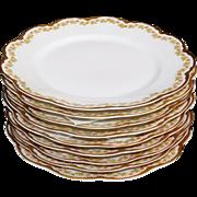 Theodore Haviland Limoges France Sch 289 Nine Luncheon Plates