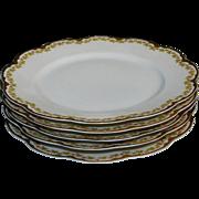 Theodore Haviland Limoges France 5 Dinner Plates