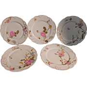 7  Haviland Limoges Luncheon Plates Pattern: H764